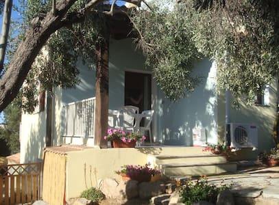 Casa Elisa - Province of Olbia-Tempio - House