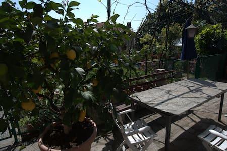 Il limone sul Lago Maggiore - Wohnung