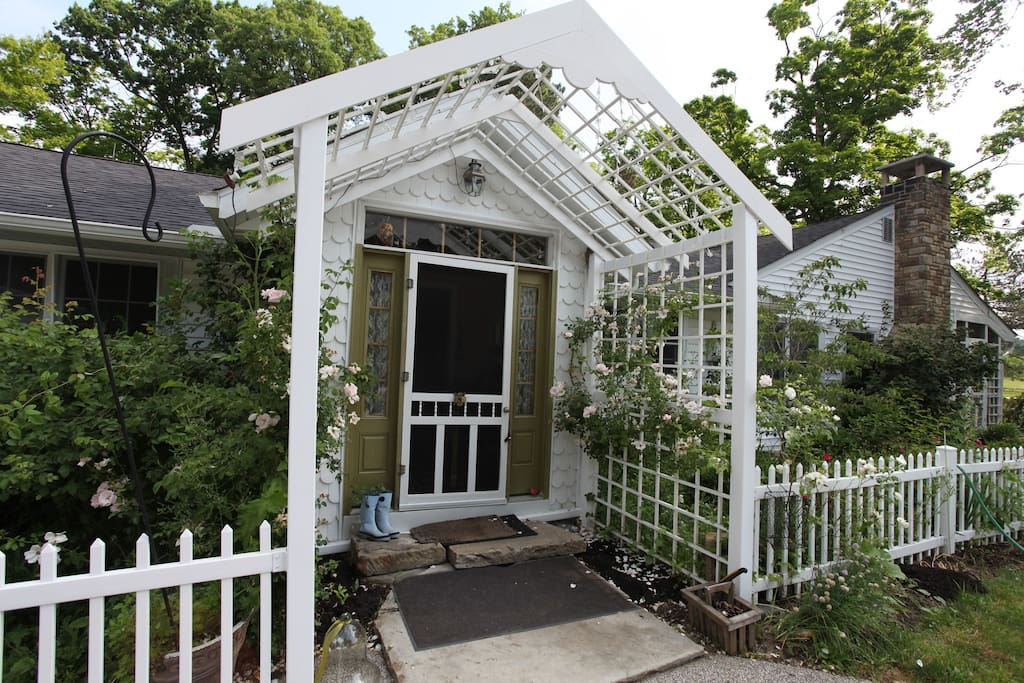 Ultimate Zen in Medina Ohio