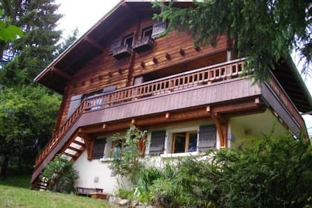 Chalet de montagne - Chalet