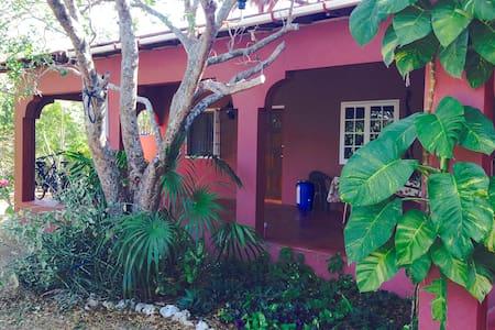 Turtle House - Rural Beach Retreat - Treasure Beach - Villa