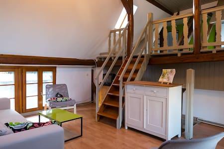 Logement rénové dans ferme alsacien - Apartment