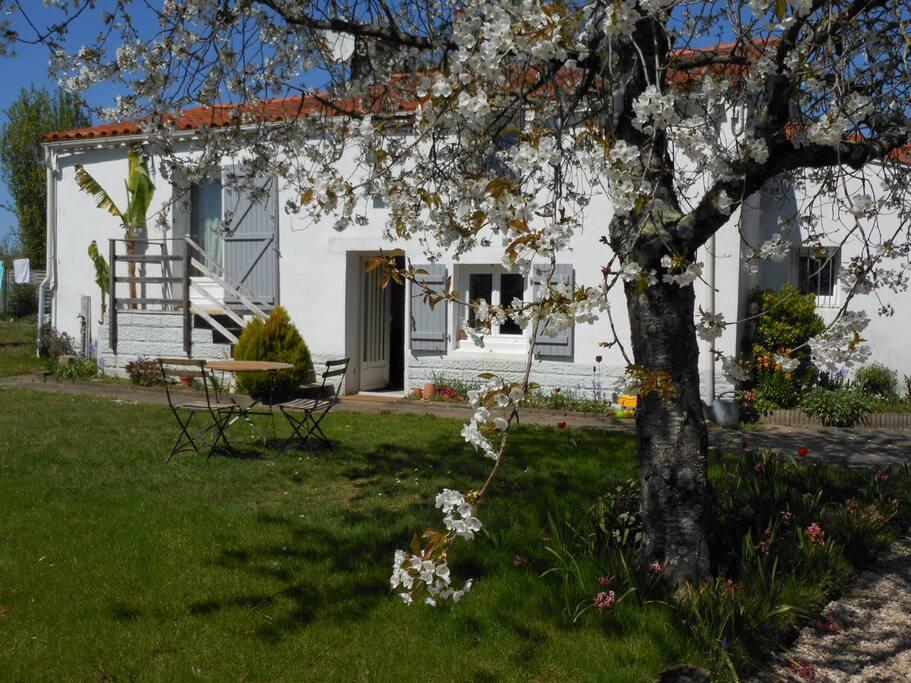 Chambre dans maison ancienne houses for rent in sainte - Humidite dans maison ancienne ...