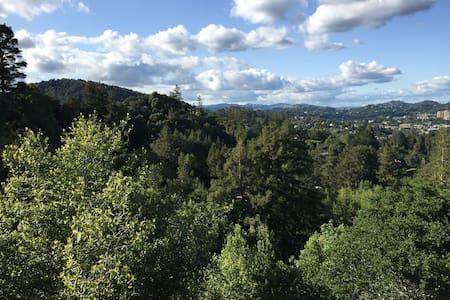 Stunning Marin Mountain House Views - Larkspur