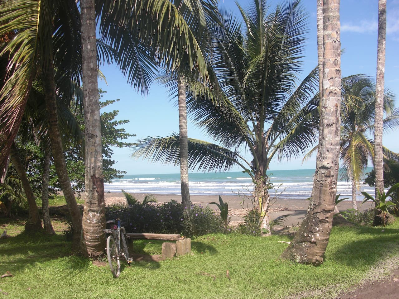 170 meters from Casa Verde, Playa Negra, Cahuita