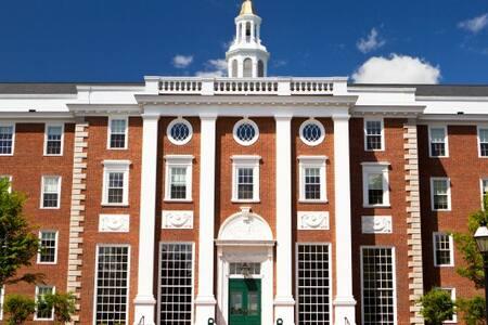 Gorgeous Apt Next to Harvard