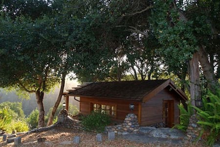 The Library House in the Redwoods - Soquel