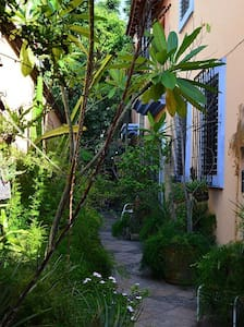 Comfortable room in the heart of Oaxaca B&B - Oaxaca - Bed & Breakfast
