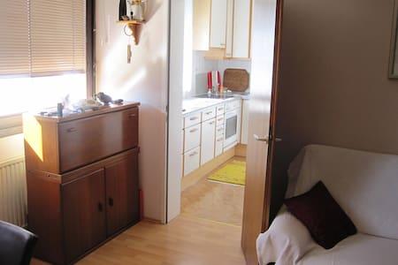 50 m2 Wohnung in grünstem Stadtteil - Viena - Apartamento