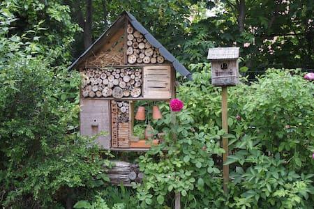 Chambre au calme dans le jardin... - Bed & Breakfast