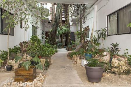 King size bed, prvt bathroom, priviledge location! - Playa del Carmen - Appartement