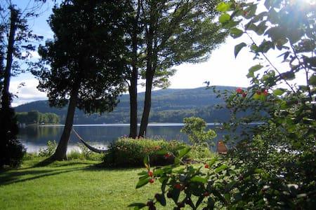Chambre vue imprenable sur lac noir - Bed & Breakfast