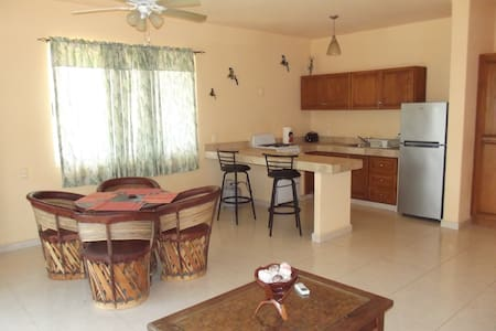1 bedroom apartment - San Jose Del Cabo  - Condominium