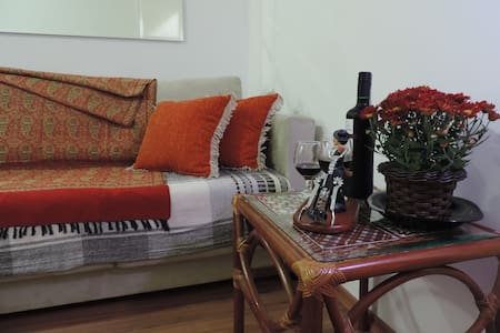 Apartment fully renovated. Clean and Discreet apace. Single bed, home office desk, wardrobe. Available use of common areas of the apartment: living room, kitchen and bathroom. Wi-Fi is available throughout the apartment, with TV in the sit room. Apartment located in the heart of Sao Paulo, close to several tourist places.