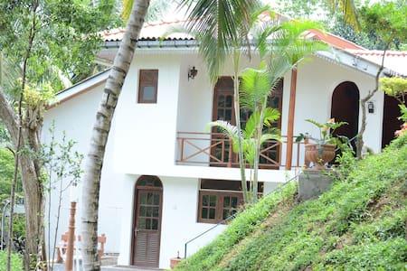 Shady Grove Tourist Bungalow -Kandy - Villa