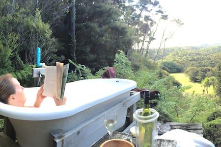 Eco-bach inside a kiwi sanctuary - House