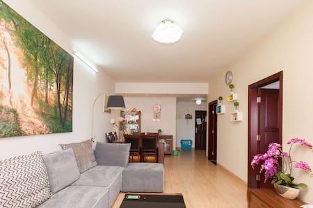 佐儿家民宿~离海近的两室一厅公寓 - Haikou Shi - Apartment