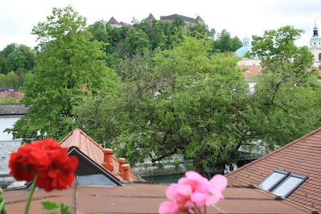 Sunny spacious in the heart of town - Ljubljana - Apartment