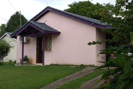 Hanover Orange Bay Jamaica THC+ - Ház