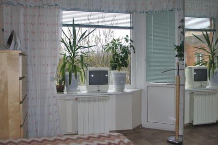 Уютная комната с видом на озеро - Petergof