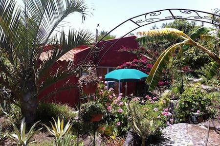 Casitta Estrella Isla La Palma - House