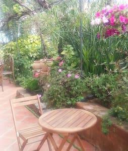 Joli rez de jardin à 5 km de Cannes - Vallauris - Apartment