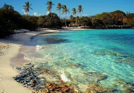 Beachside Beauty - Lakás