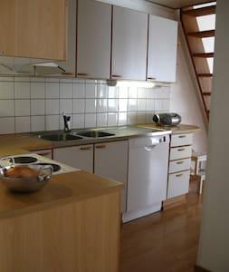Spacious apartment in quiet area near University - Lejlighed
