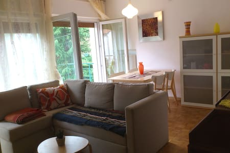 Charming flat in Belluno - Flat