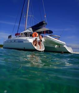 Cabine sur Catamaran à St Mandrier - Saint-Mandrier-sur-Mer - Bed & Breakfast