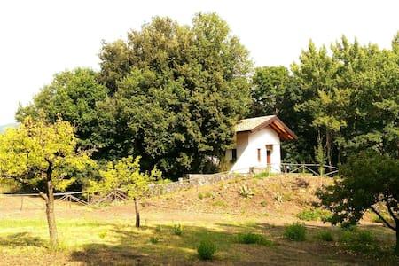 Etna chalet  - Trecastagni - Blockhütte