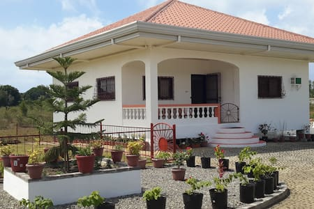 Holiday House for Rent in Bohol