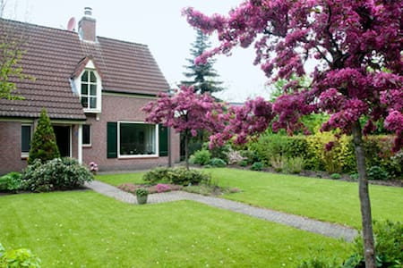Hier bent u de koning te rijk! - Bed & Breakfast