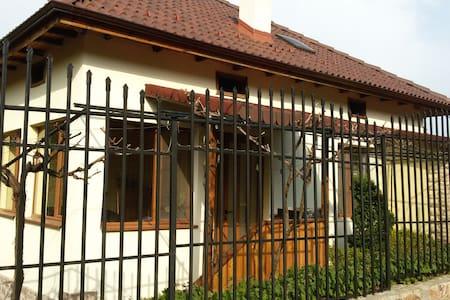 Cozy house near Vurshets - Dolna Bela Rechka - Casa