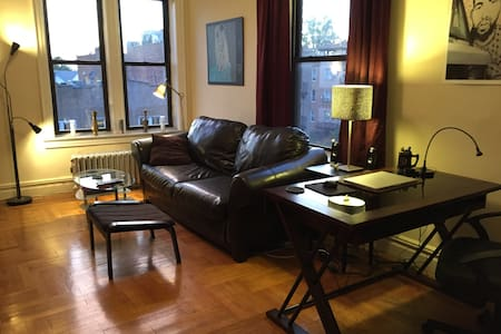 Sunny spacious 1-bd in great Brooklyn neighborhood - Brooklyn - Apartment
