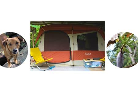 Comfortable and Ecological Camping - Benque Viejo Del Carmen - Tienda de campaña