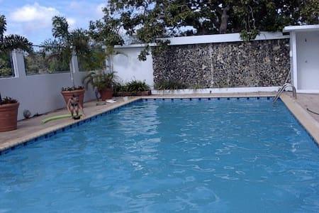 LIVE IN PARADISE 1 - Aguadilla