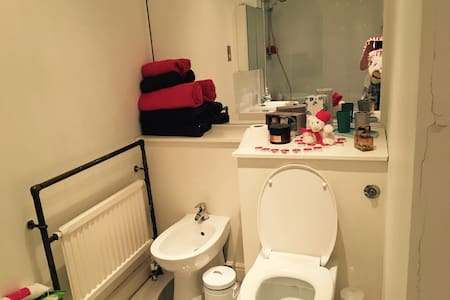 SINGLE ROOM CENTRAL LONDON - London - Apartment