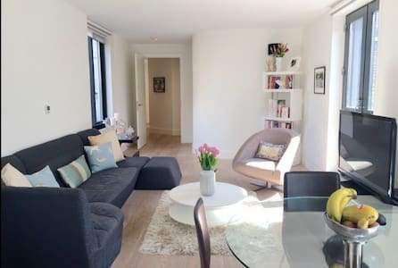 Luxurious Flat in Central London
