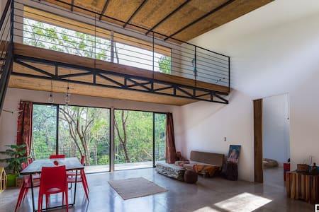 Organic - contemporary Loft House - San Mateo - House