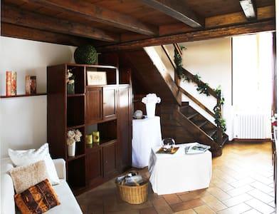 Tipica cascina Lombarda del '500 - Apartment