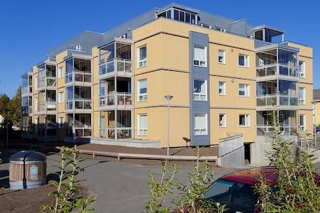 Very central apartment with B&B - Apartamento