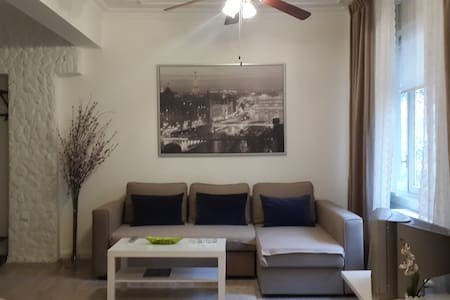 studio apartment , parking near the swans 3 minutes walk to Tunali Hilmi Caddesi