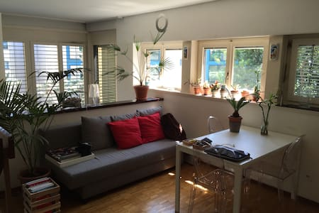 Like your home. Free Wi-Fi + 1 parking lot. - Lugano - Loft