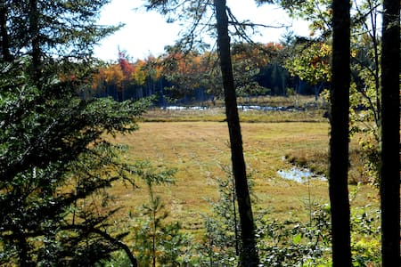 Camp Kwitchabitchin at Bad Beaver Farm - Cabin