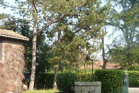 La campagne aux portes de Bordeaux - Sainte-Eulalie