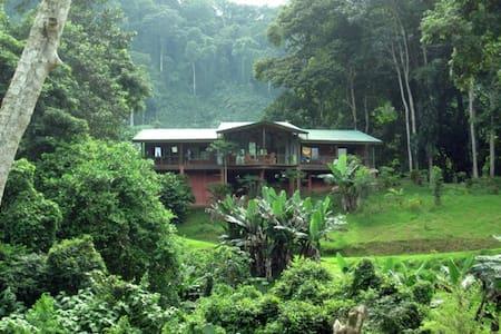 Casananda-jungle home in Platanillo - Platanillo - House
