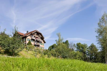 Haus Kammern 168 - Top floor (FW 2) - Daire
