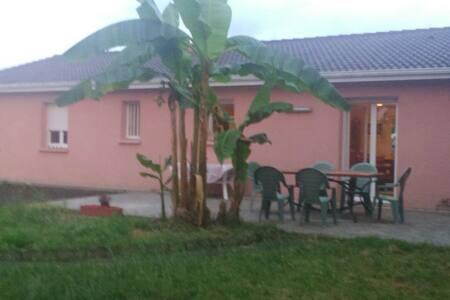Chambre 16m2 maison et jardin. - Dům