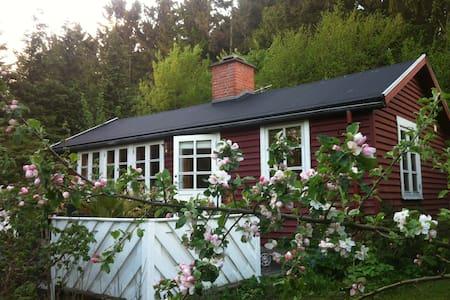 Cottage n beach south of Copenhagen - Faxe - Hus